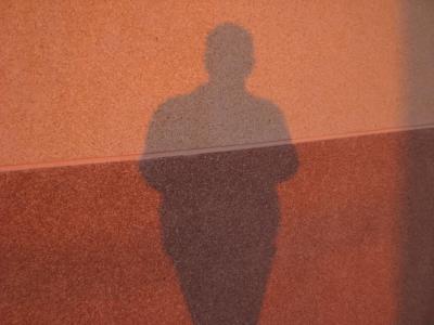 La sombra solitaria